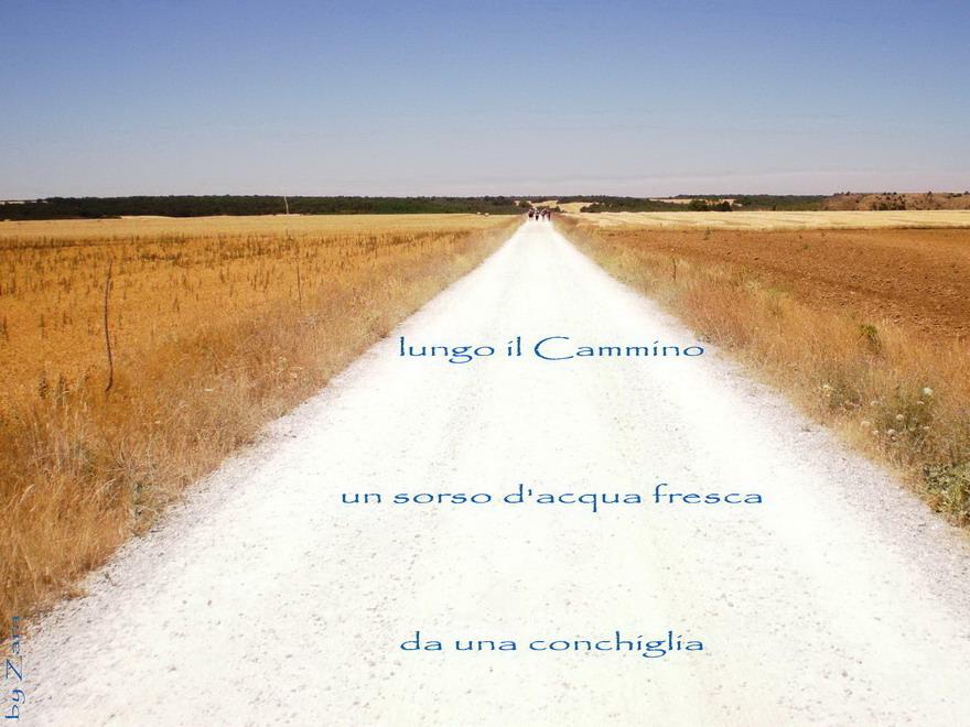 Cammino2 (2)