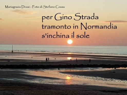 Dessi-per Gino Strada